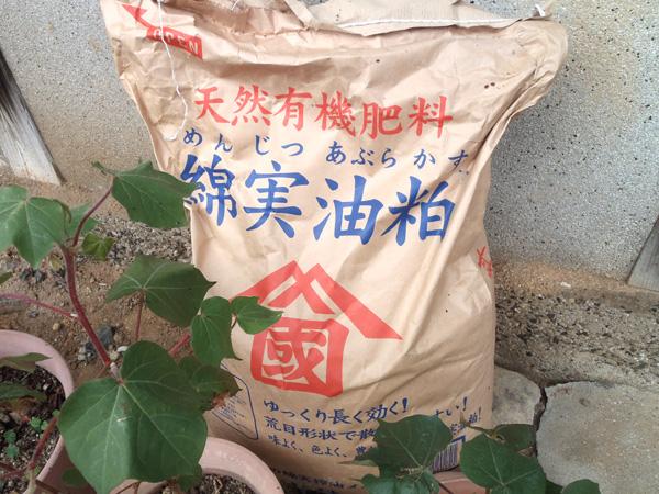 有機肥料 綿実油粕