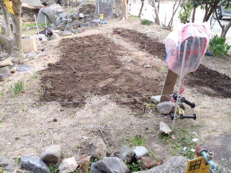 家庭菜園元肥え