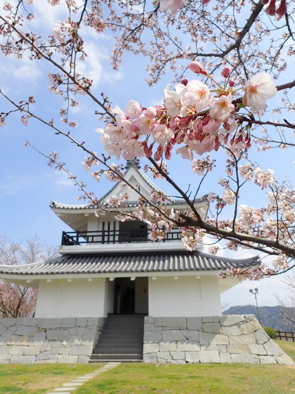 海山城展望公園の桜2019
