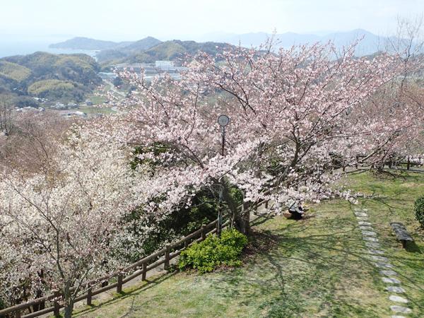 海山城天守からの眺め