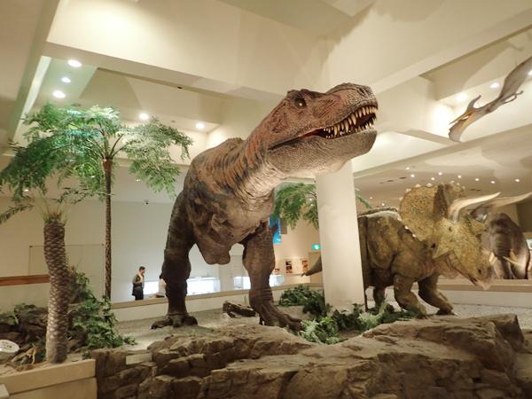 愛媛県総合科学博物館の動く恐竜