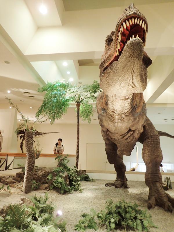 愛媛県総合科学博物館ティラノサウルス