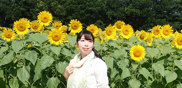 大洲五郎のヒマワリ畑