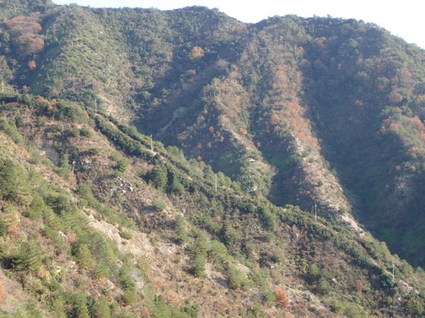 鷲ヶ頭山入日の滝ルート
