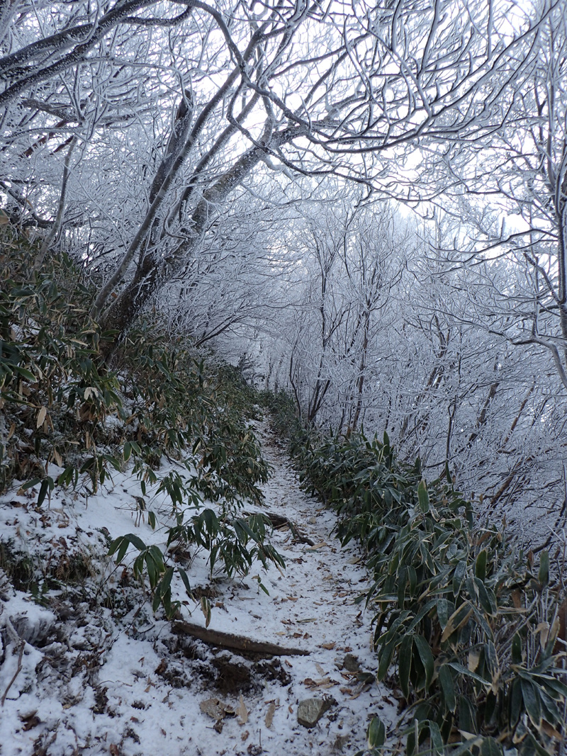 伊予富士登山の雪山