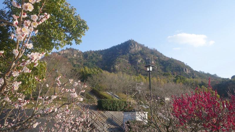 安神山わくわくパークと安神山